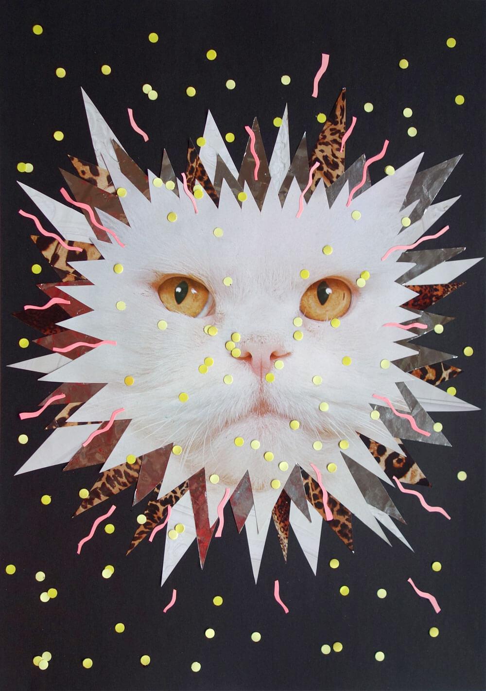 sylvia_stolan_white_cat