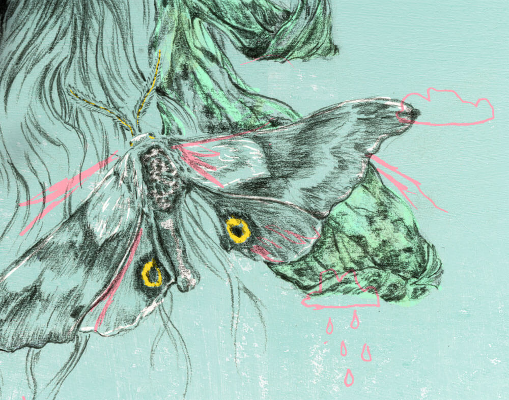 detail05.sketch.illustration.yaelnaim.sylviastolan